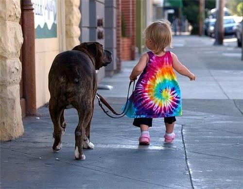 paseando al perro